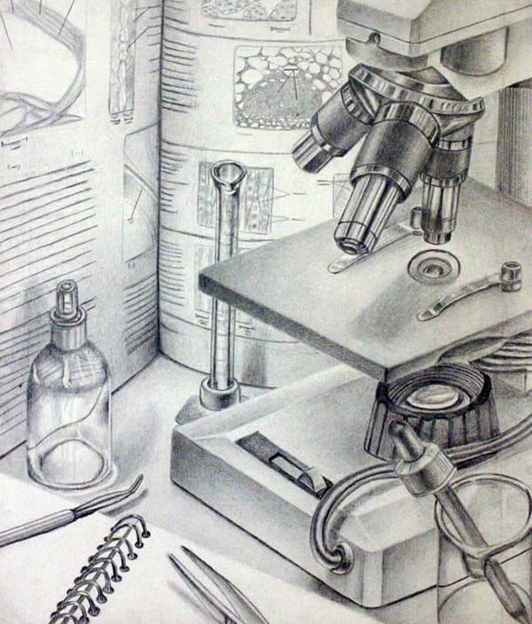 Amazing Observational Drawing Ideas