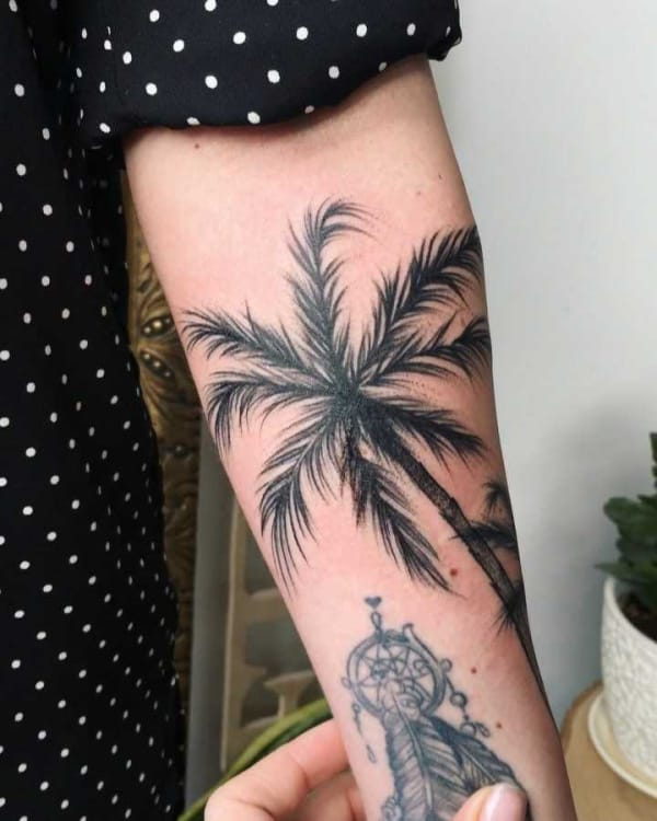 Beautiful Palm Tree Tattoo Designs And Meaning